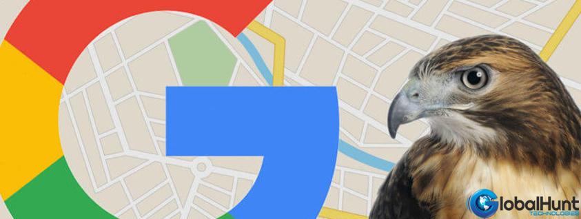 Hawk Google Algorithm